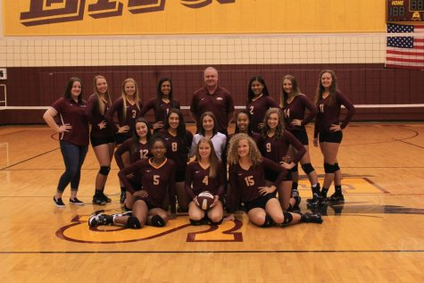 Volleyball to Start District