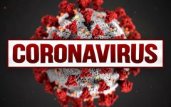 Coronavirus Outbreak Causes Nationwide Emergency
