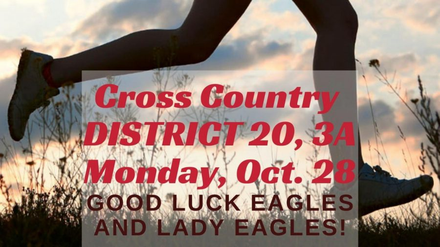 Cross+Country+to+hold+District+Meet